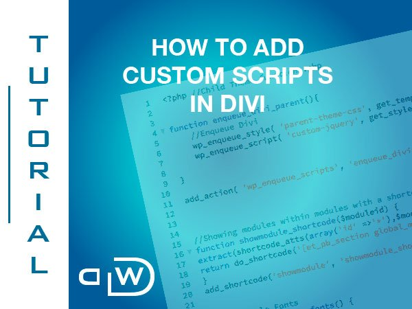 How to Add Custom Scripts in Divi