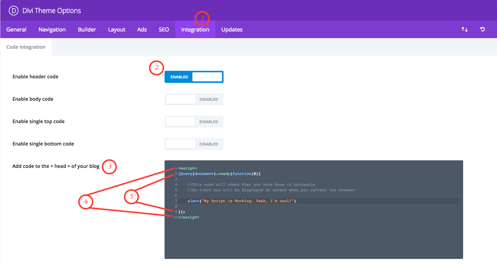 How to Add Custom Scripts in Divi | Divi Works